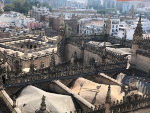 ヒラルダの塔から望むセビーリャ大聖堂